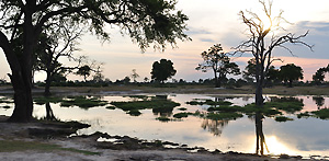 This lake is situated in Hwange National Park