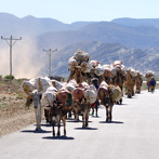 Road to Hamed Ela camp from Mekelle